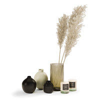 Decor Set With Pampas Grass 02