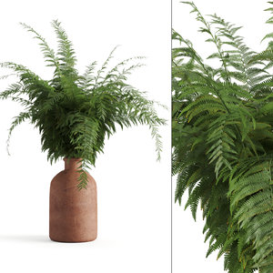 3D fern terracotta vase model