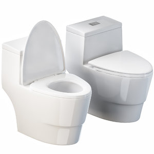 woodbridge t-0001 dual flush model
