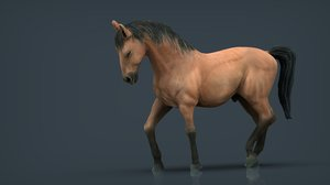 spanish horse 3D