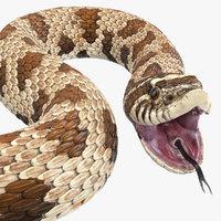 brown hognose snake rigged model
