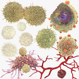 3D cancer cells lymphocytes