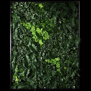 moss flora nature 3D model
