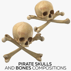 3D pirate skulls bones compositions model