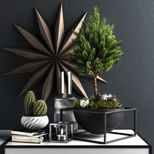 decorative set pine 3D