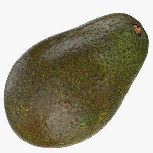 avocado hass 03 model