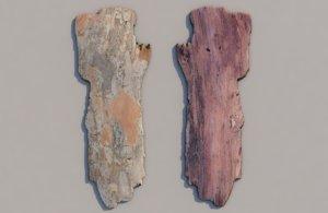 3D bark tree wood