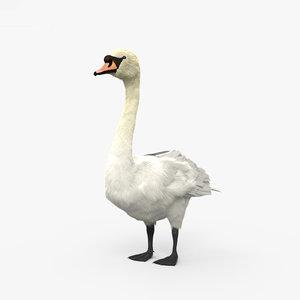 mute swan t 3D model