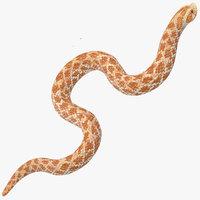 beige hognose snake rigged 3D model