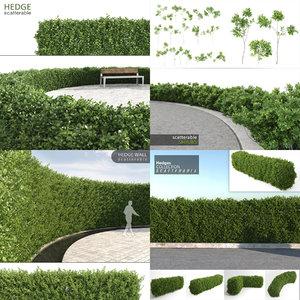 realistic hedges max