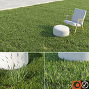 Lawn + Grasses Pack (+GrowFX)