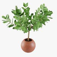 3D plant design modeled