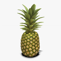 pineapple real time 3D model