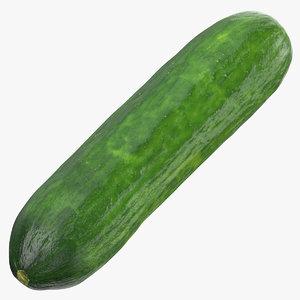 short persian cucumber 01 model