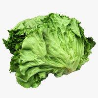 Salad Heads 04