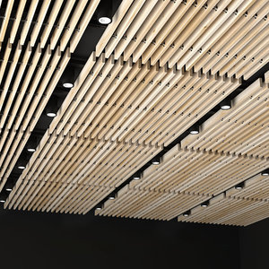 3D ceiling overhead donolux model