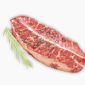 meat steak rosemary model