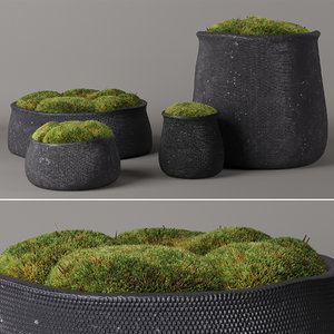 corona moss 3D model