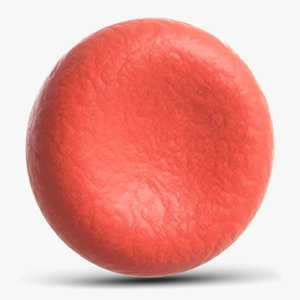 3D red blood cell model