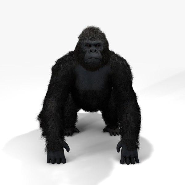 3D gorilla fur|rigged animate