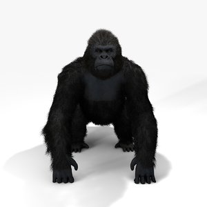 3D gorilla fur|rigged animate