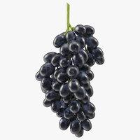 cluster black grapes 3D model