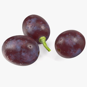 dark grapes 3D model