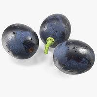3D model black grapes