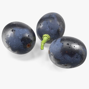 3D model black grapes