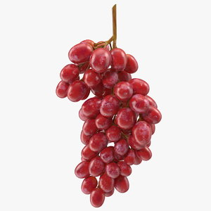 3D cluster pink grapes model