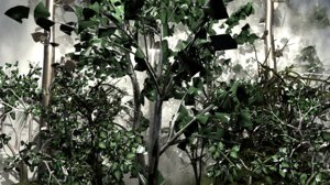 3D model jungle forest mist