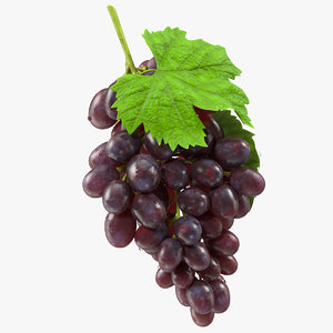 3D bunch dark grapes