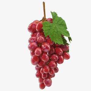 bunch pink grapes 3D model