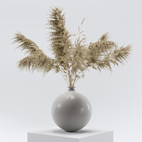 Vase with dry flowers_0001