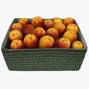 3D wicker basket apricots model