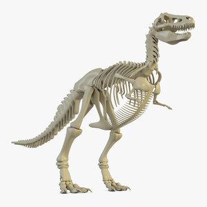 3D dinosaur skeleton model