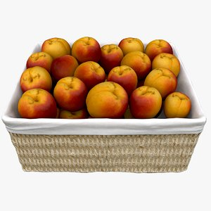 wicker basket apricots model