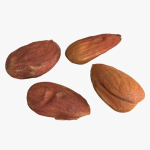 photogrammetry almond kernels 3D model