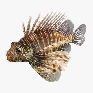 3D lionfish rigged model