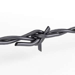 barbed wire model
