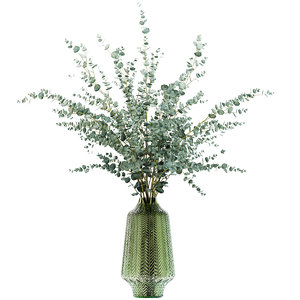 eucalyptus branches green vase 3D model