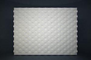 3D panel 03
