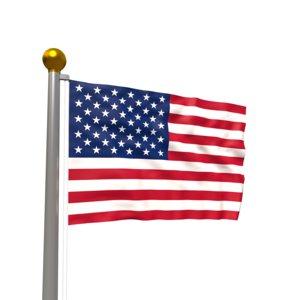 realistic waving flag 3D model