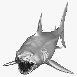 3D great white shark open mouth