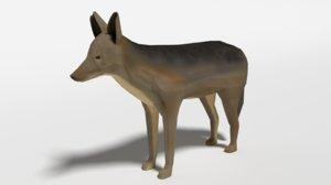 jackal nature 3D model