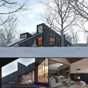 3D winter cabin house