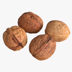 3D photogrammetry unshelled walnuts model