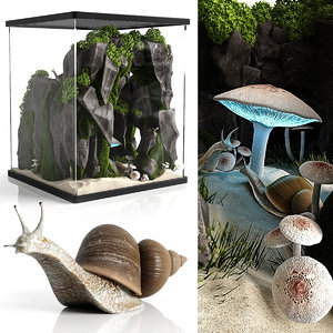3D terrarium snails model