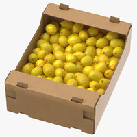 Cardboard Display Box 03 with Lemons(1)