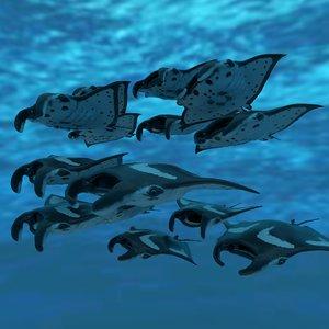 3D manta stingray animations 6